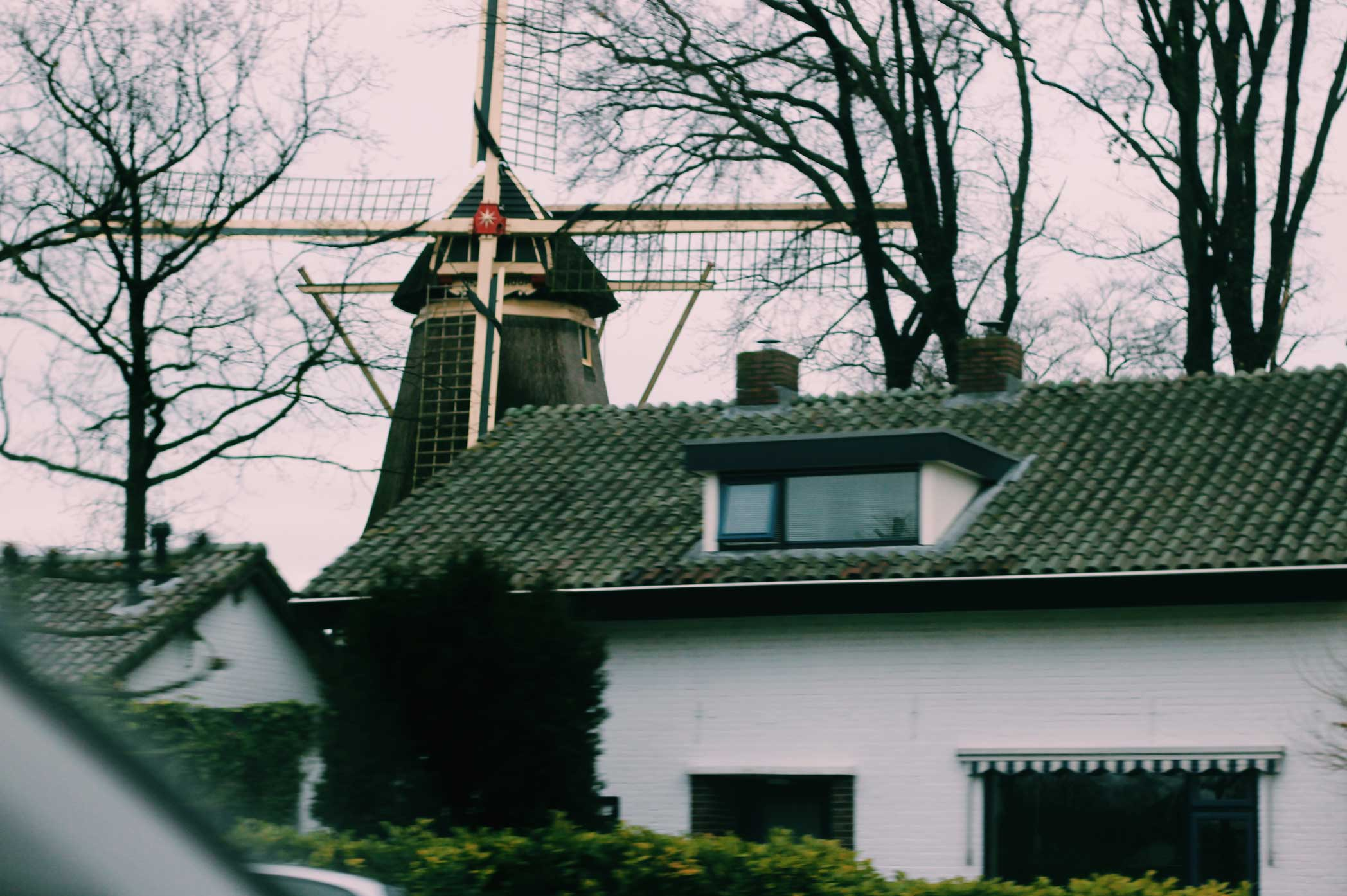 Oosterwolde, The Netherlands - ROGUE365 - The Good Rogue