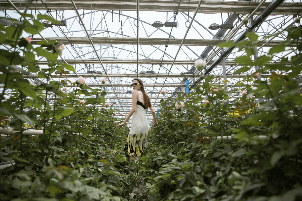 8 Awesome Reasons to Invest in a Greenhouse